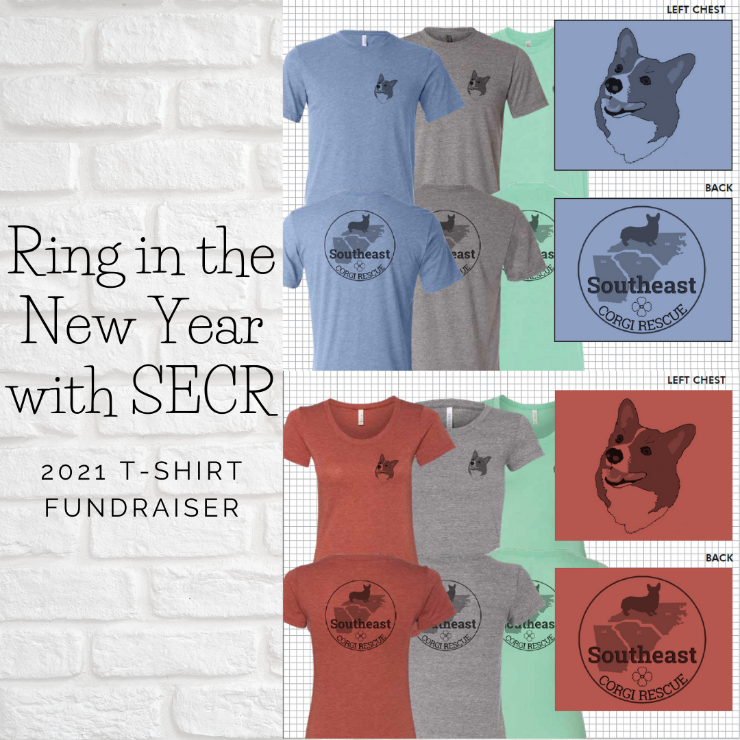Ring in the New Year with SECR (1)