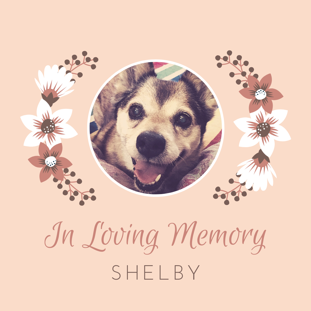 Shelby Memory